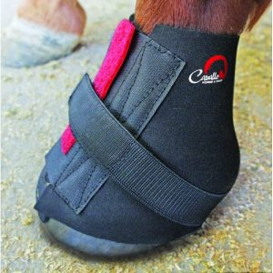 Hoof Boot Accessories